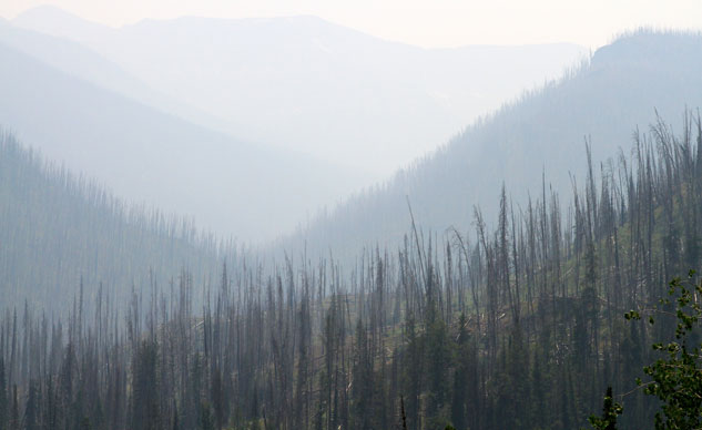 Smoke in Yellowstone National Park