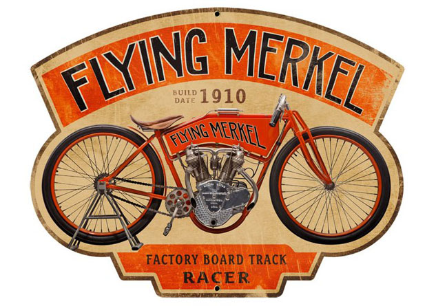 CM Flying Merkel