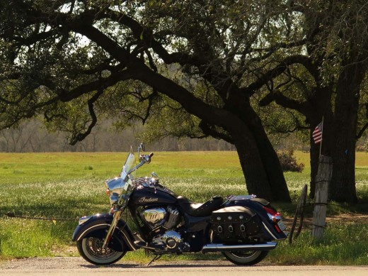 042214-2014-indian-chief-classic-big-tree