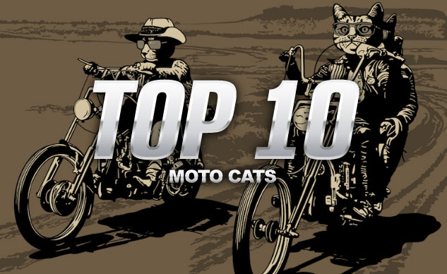 100914-top-10-motorcycle-cats-0-f