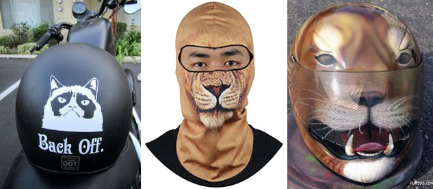 100914-top-10-motorcycle-cats-04-cat-headgear