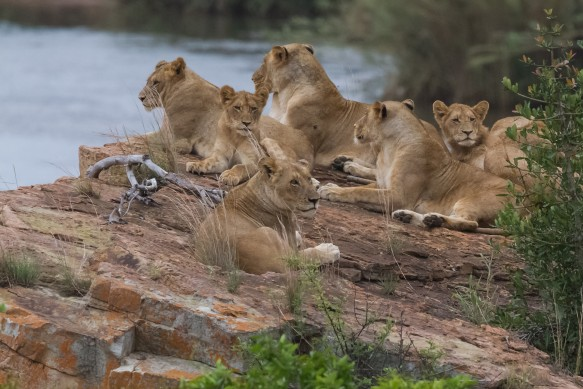 010614-bayly-south-africa-IMG_6885