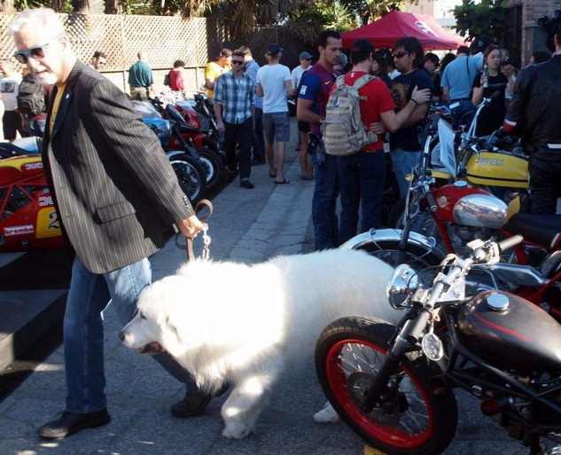 And yes, the dog is Italian. His name is Rocki. As far as I know he did not bite one motorcycle.