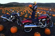 We'll leave his sexual preferences alone at this time, though we will tell you that, through no fault of Yamaha or their Warrior, Calvin was seen riding a pumpkin at one point.