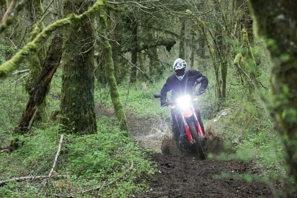 19 Honda CRF450L_Action_3