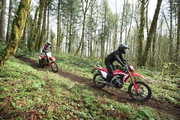 19 Honda CRF450L_Action_4