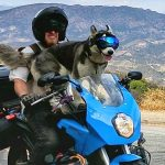 electric motorcycle touring