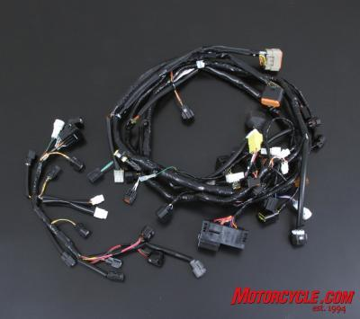Full Race Harness