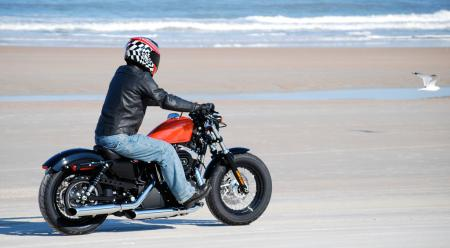 Riding the Forty-Eight was such a kick we even tried to convince the birds it�s a sweet new Sporty!
