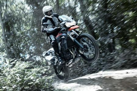 Hot Bikes Triumph Tiger 800-02