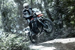 Triumph Tiger 800 and Tiger 800 XC