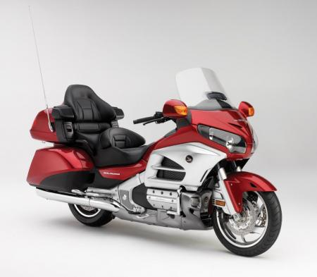 12_GoldWing_Det02_lr