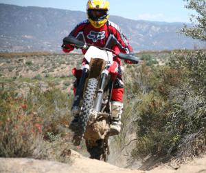 The TXC310 is all-new for 2012, boasting a noticeable increase in power over the mechanically similar TXC250.