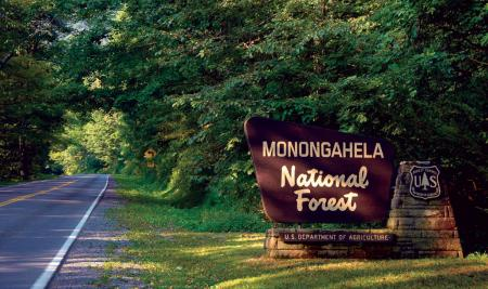 Monongahela National Forest