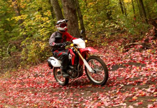 Go Ride Motorcycles in Ontario
