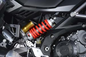 2013 Aprilia Caponord 1200 Rear Suspension