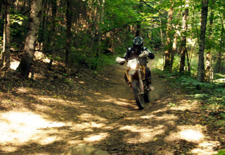 Off-Road Riding in the Forest
