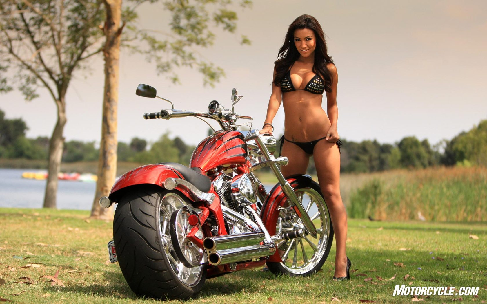 Harley Davidson Windshields >> Motorcycle Babe: Alex Zerega with Big Dog Motorcycles