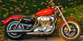 2012 Harley-Davidson Sportster SuperLow Review