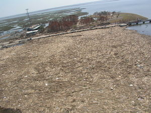 A massive debris field in Slidell, Louisiana. Gabe's never seen anything like this and he hopes he never sees anything like it again.