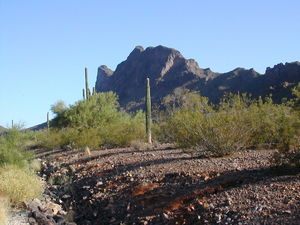 Picacho Peak, between Tucson and Phoenix, was the site of the westernmost Civil War Battle.
