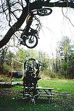 The motorcycle tree