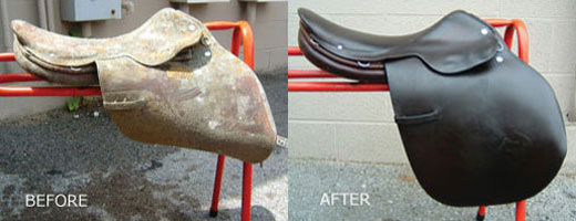 This is a before and after of a badly mildewed saddle that was restored using Leather Therapy products.