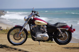 Sun, Fun and a Sportster.