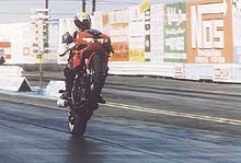 If you can't wheelie a TL1000, you suck.