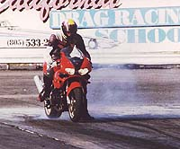"Shawn ""Highside"" Higbee exploiting the TL1000's ample ground clearance. Suzuki's contender is clearly a winner when the going gets twisty."