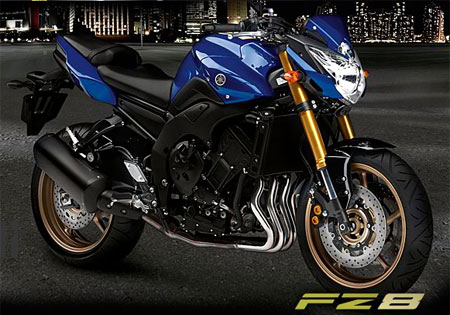 Yamahja will release more information about the FZ8 at the official launch in March.