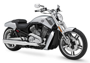 A V-Rod Muscle led other 2009 Harley-Davidson models in closing trading on the NYSE.