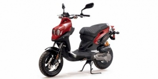 2008 Genuine Scooter Co. Rattler 110