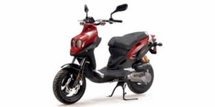 2009 Genuine Scooter Co. Rattler 110
