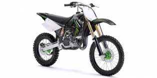 2009 Kawasaki KX™ 100 Monster Energy