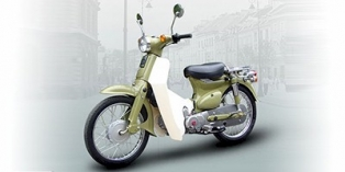 2010 Flyscooters Fly Scout 110
