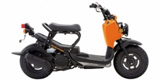 2011 Honda Ruckus Base