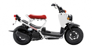2013 Honda Ruckus Base