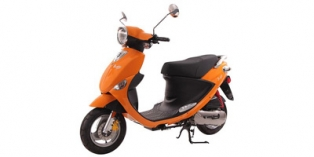 2014 Genuine Scooter Co. Buddy 50