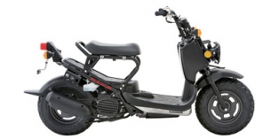 2014 Honda Ruckus Base