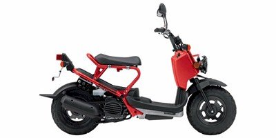 2009 Honda Ruckus Base