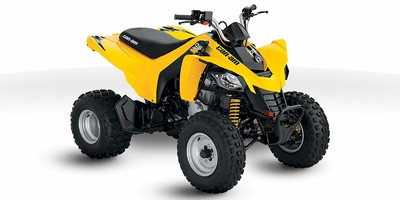 2012 Can-Am™ DS 250